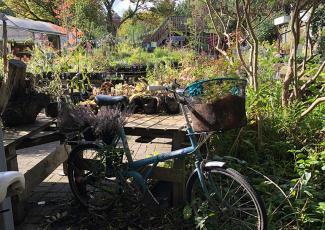 Hulme Community City Garden Manchester