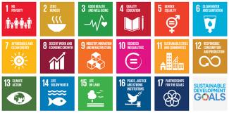 Sustainable Development Goals, SDGs