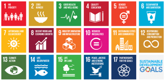 Sustainable Development Goals, SDGs
