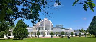 Palmhuset, en grön oas i Göteborg