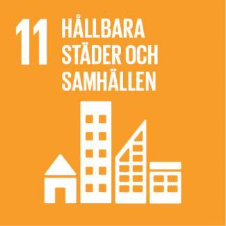 Sustainable development goal 11